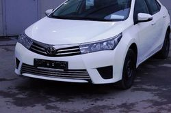 Решетка в бампер Corolla 2013 (нержавейка)